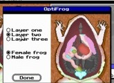 Operation Frog - DOS